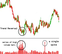 Maksud saham forex